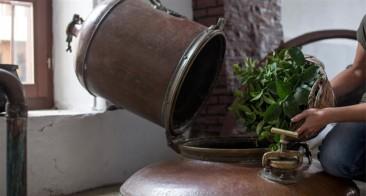 Wine & Spirits: Intro to Kitro