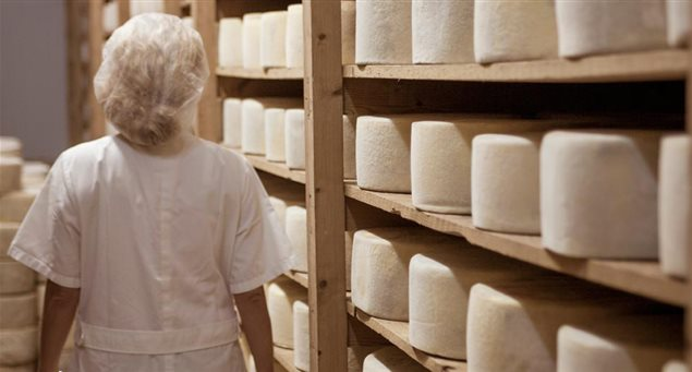 Naxos: The King of Cheese